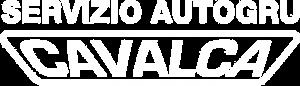 Cavalca Autogru é specializzata in noleggio autogru, camion gru, piattaforme aeree gru semoventi a Reggio Emilia, Modena, Parma, Mantova, Bologna e Piacenza